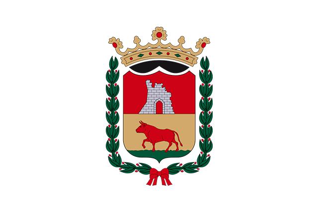 Bandera Navarrés