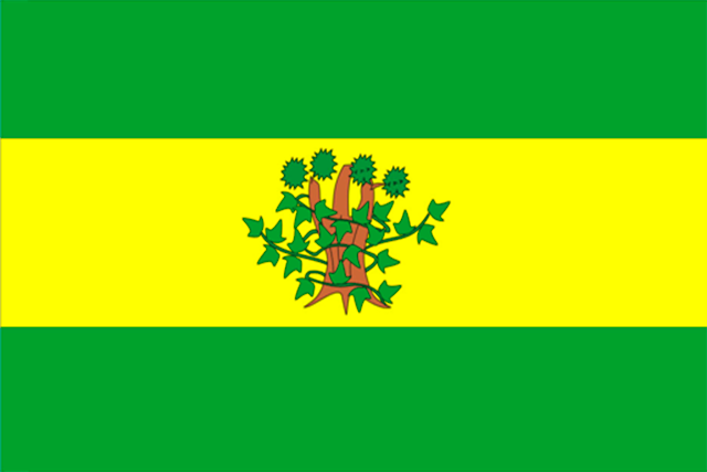 Bandera Oroso