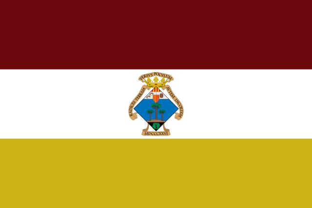 Bandera Pinós, el/Pinoso