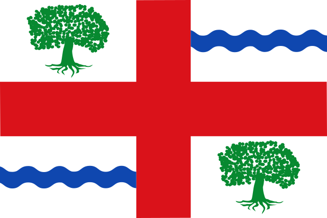 Bandera Salce