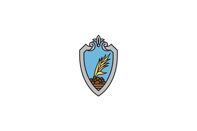 Bandera Sant Esteve Sesrovires