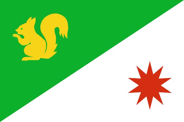 Bandera Somio