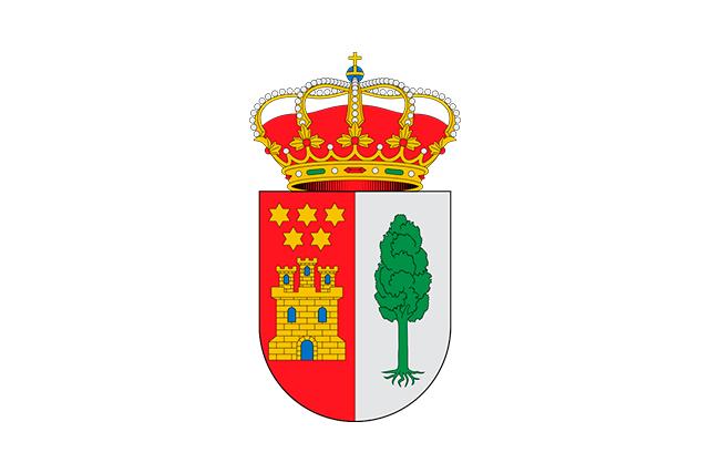 Bandera Valles de Palenzuela