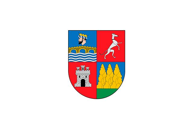 Bandera Vidángoz/Bidankoze