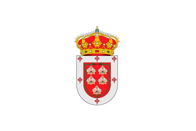 Bandera Villanueva de los Caballeros
