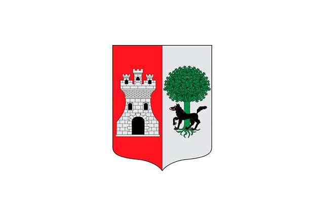 Bandera Alonsotegi