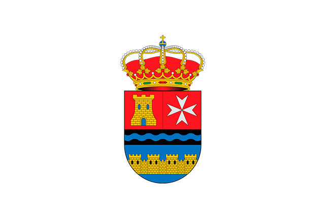 Bandera Arenas de San Juan