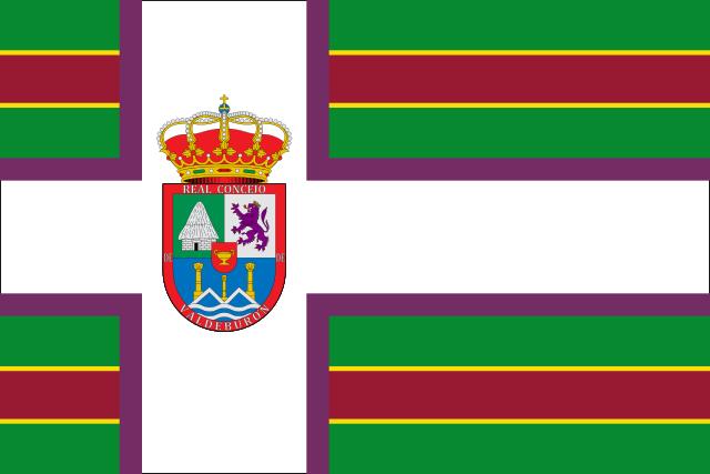Bandera Burón