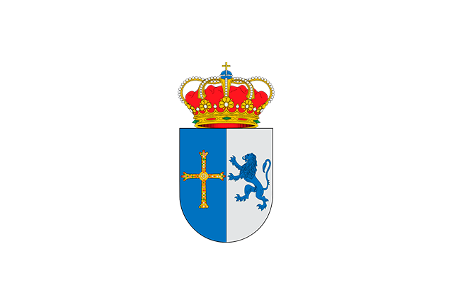 Bandera Cangas del Narcea