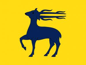 Bandera Cervelló