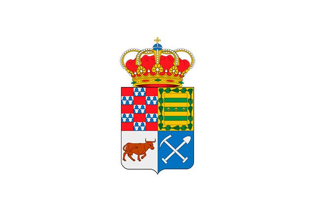 Bandera Degaña