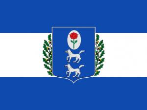 Bandera Muskiz