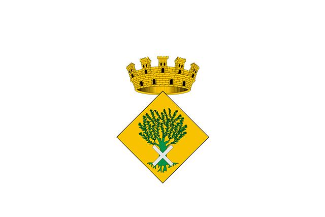 Bandera Oliana