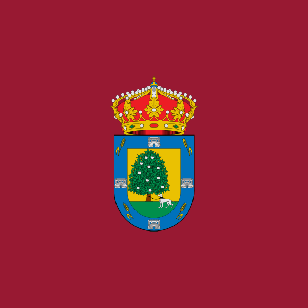 Bandera Palacios de Goda
