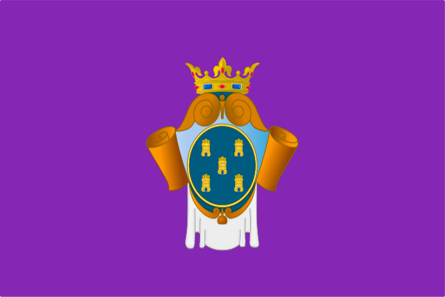 Bandera Peñaranda de Bracamonte