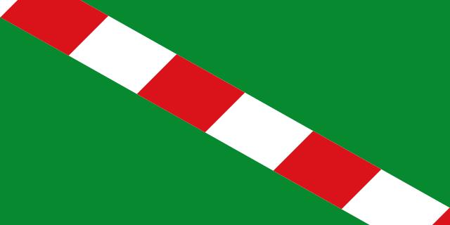 Bandera Portillo de Toledo
