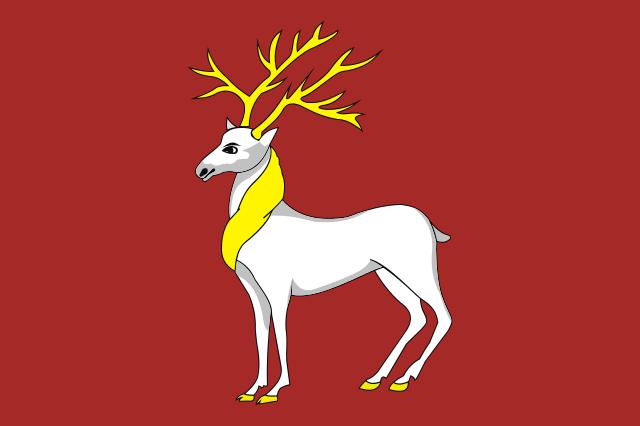 Bandera Rostov