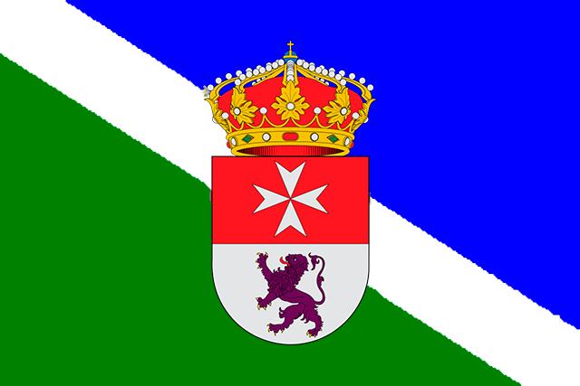 Bandera San Martín de Trevejo