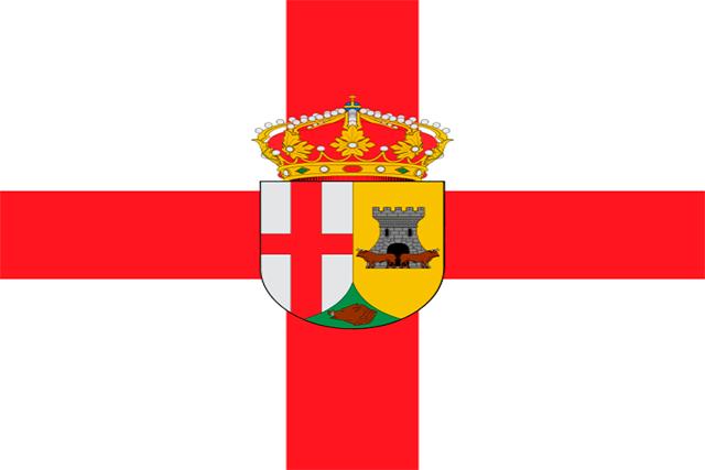 Bandera Valdecaballeros