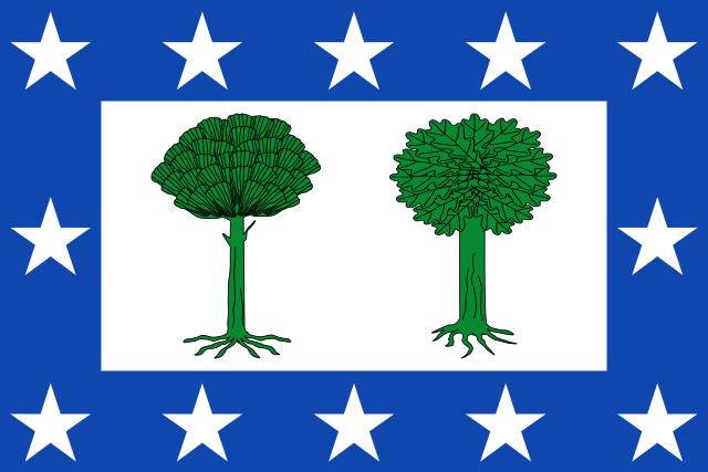 Bandera Valdesimonte