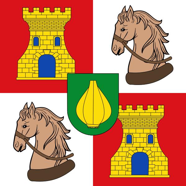 Bandera Vallelado