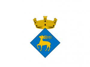 Bandera Vallirana
