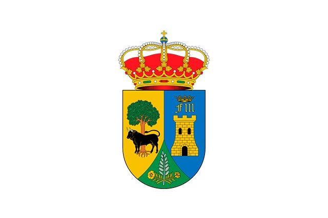 Bandera Villar del Pedroso