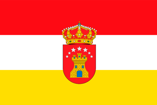 Bandera Castrillo de la Reina