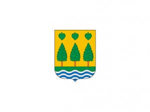 Bandera Lezo