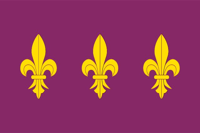 Bandera Los Gallardos