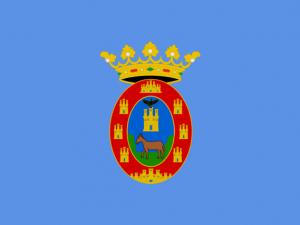 Bandera Mula