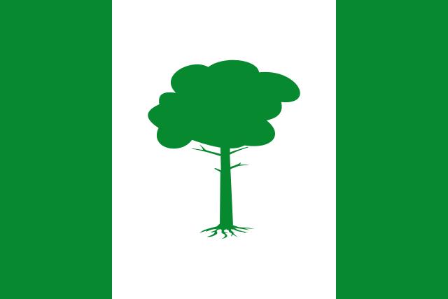Bandera Pinos Puente