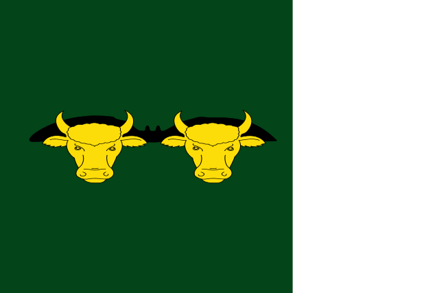 Bandera Rocallaura