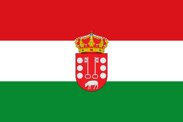 Bandera Rozas de Puerto Real