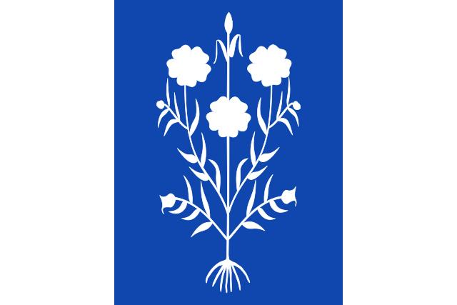 Bandera Sancedo