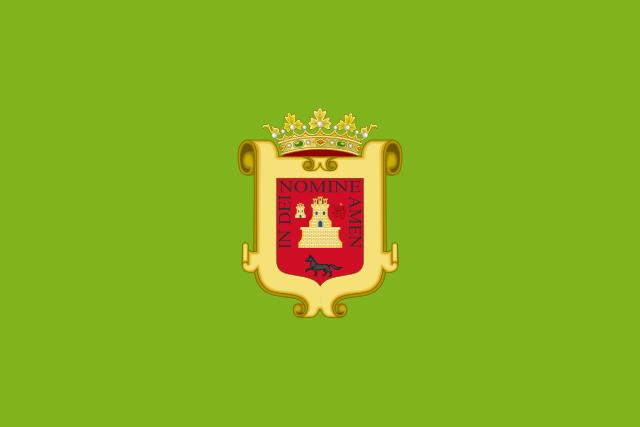 Bandera Vejer de la Frontera