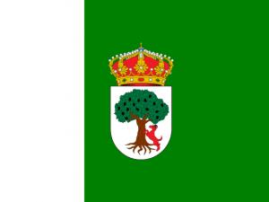 Bandera Aceuchal