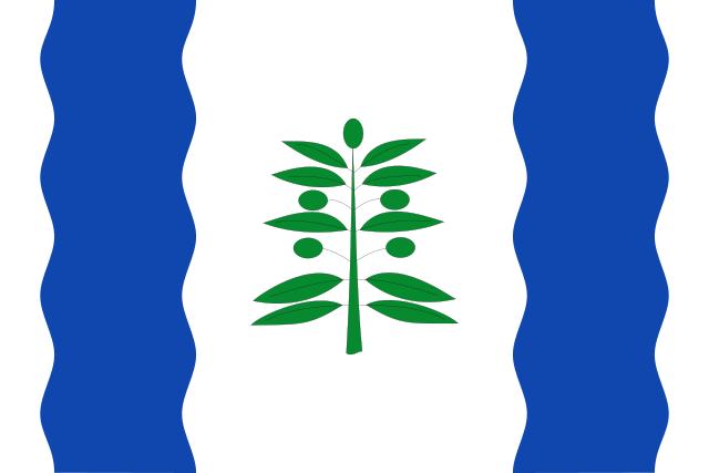 Bandera Cinco Olivas