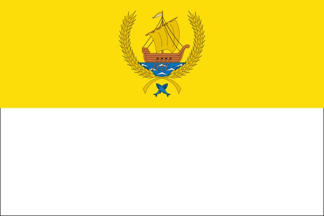 Bandera Coria del Río
