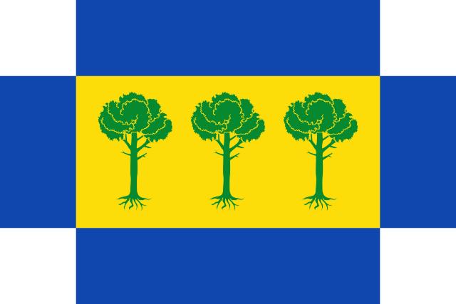 Bandera San Martín y Mudrián