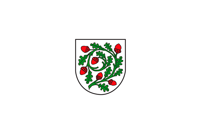 Bandera Aichstetten