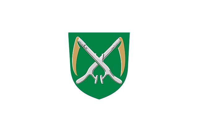 Bandera Alavieska