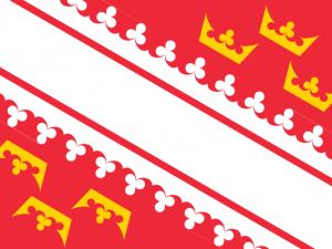 Bandera Alsacia