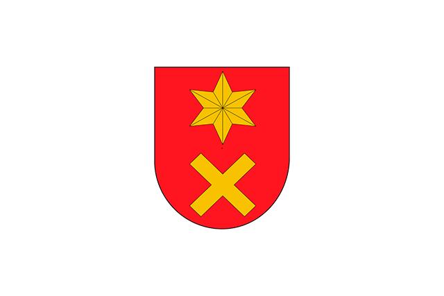 Bandera Ancín/Antzin