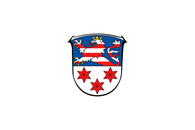 Bandera Angelburg