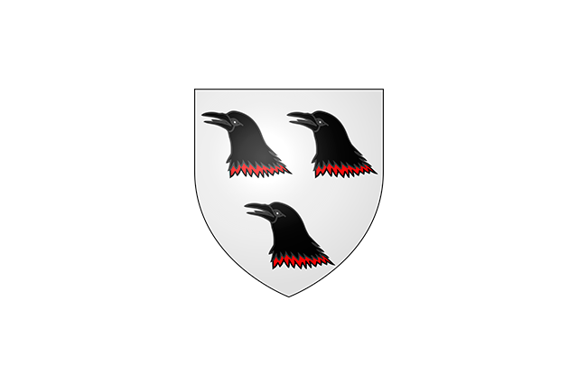 Bandera Arnouville