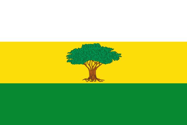 Bandera Arroyohondo