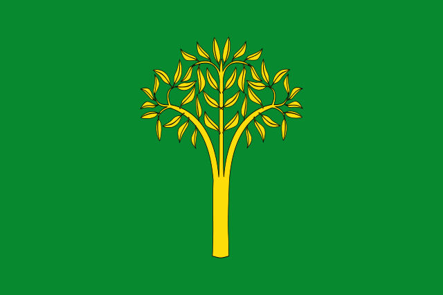 Bandera Llorac
