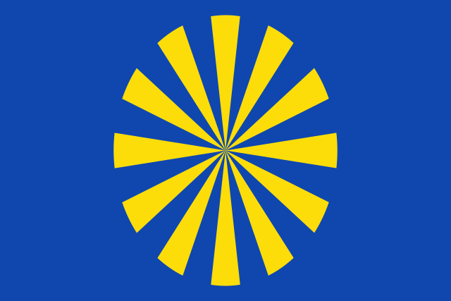 Bandera Saviñao