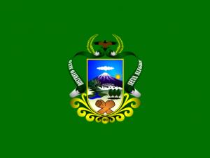 Bandera Alto Selva Alegre